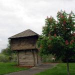 Fort Henrietta