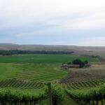 Sno Road Winery